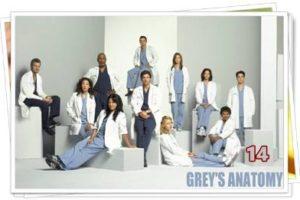 Анатомия страсти 14 сезон дата выхода сериала