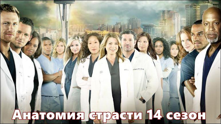 Анатомия страсти 14 сезон дата выхода